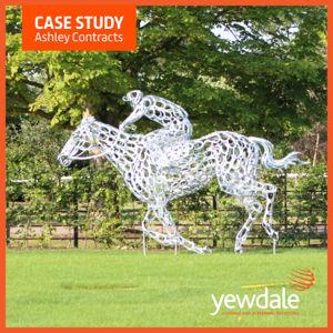 Case Study | British Racing School